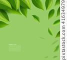 ชา,สีเขียว,เขียว 41634979