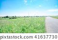 蓝天 蓝蓝的天空 风景 41637730