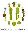 cactuses, icon, cactus 41639942