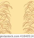 ฤดูใบไม้ร่วง,นา,ชาวนา 41640514