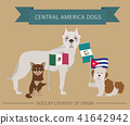 Dogs by country of origin. Latin american dogs 41642942