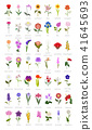 Your garden flowers guide infographic. Top 50 41645693
