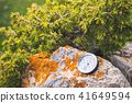 A magnetic compass lies on a stone next to the branches of a juniper 41649594
