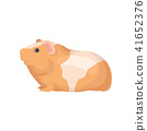 Flat vector icon of guinea pig with orange-white coat. Cute domestic animal. Home pet. Element for 41652376