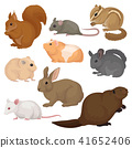 Flat vector set of various rodents. Small forest and domestic animals. Mammal creatures. Fauna and 41652406