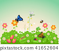 Garden Insects Illustration 41652604