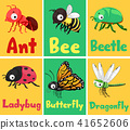 Insects Flash Cards Illustration 41652606