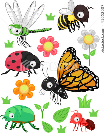 Insects Flowers Elements Illustration 41652607