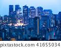 东京市区夜视图 41655034