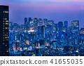 Night view of Tokyo urban area 41655035