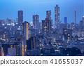 Night view of Tokyo urban area 41655037