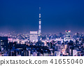 Night view of Tokyo urban area 41655040