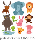 animals character design 41656715