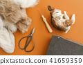 Needle felted rabbit 41659359