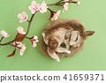 Needle felted rabbit 41659371