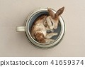 Needle felted rabbit 41659374