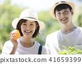 농업 야채 수확 41659399