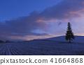 크리스마스 트리 나무 41664868