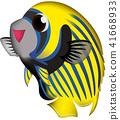 열대어, 물고기, 생선 41668933