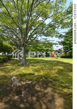 Fresh green of Takashi Park 41670304