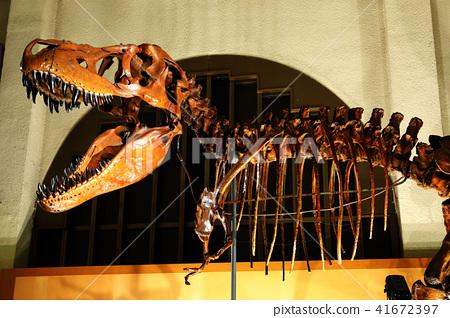 박물관이 살아 05 (티라노 사우루스 알로 사우루스) 41672397