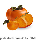 persimmon, fruit, isolated 41678969