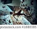 Free climber young man climbing artificial boulder indoors 41680385