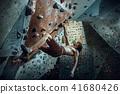 Free climber young man climbing artificial boulder indoors 41680426