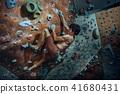 Free climber young man climbing artificial boulder indoors 41680431