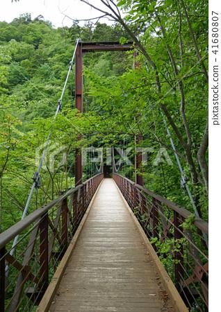 Tominaga森林的Takimi橋 41680807