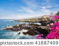 resort coast waterfront 41687409