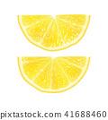柑橘 向量 向量圖 41688460