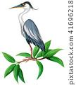 stork, vector, illustration 41696218