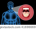 A Human Vector of Mouth 41696669