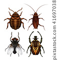 A Set of Disease Insect 41697038