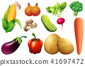 A Set of Organic Vegetable 41697472