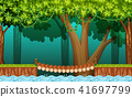The Wooden Bridge in Forest 41697799