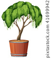 A Tree Planting in the Pot 41699942