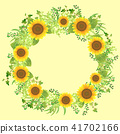 sunflower, sunflowers, frame 41702166