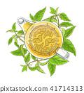 nettle, illustration, tea 41714313