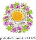 malva illustration tea 41714320