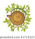 marjoram, illustration, vector 41714321