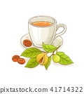 nutmeg tea illustration 41714322