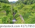 (시즈오카 현) 筏場 와사비 논 41717853