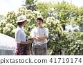 การเก็บเกี่ยวพืชผัก 41719174