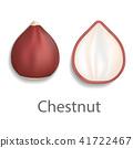 Chestnut mockup, realistic style 41722467