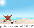 Seashells on Seashore Background 41730855