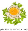 melissa tea illustration 41732254