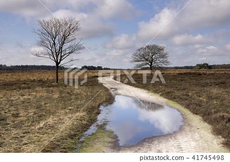 The Regte Heide 41745498