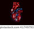 human heart, polygonal graphics 3d Illustration black background 41749793